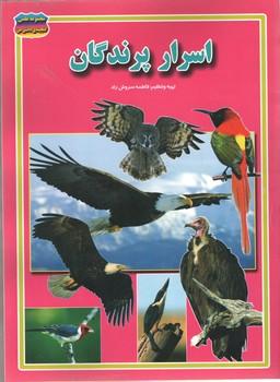 اسرار پرندگان