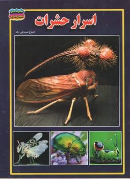 اسرار حشرات