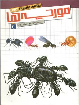 شگفتیهای جهان مورچه ها